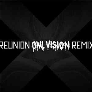 The XX - Reunion (Owl Vision Remix) album